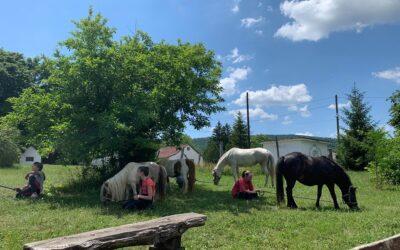 A lovas szakkörünk megszűnt